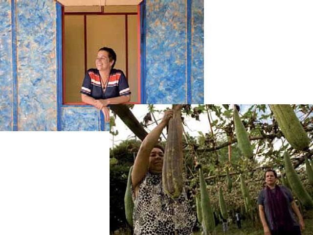 La vivienda de esponja vegetal: IDEA INNOVADORA