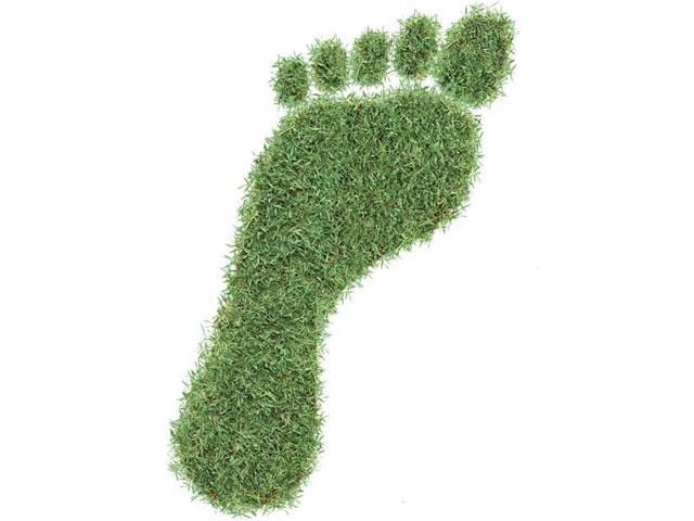 """Vender lo """"verde"""": [Claves para sacar todo el partido a la sostenibilidad]"""