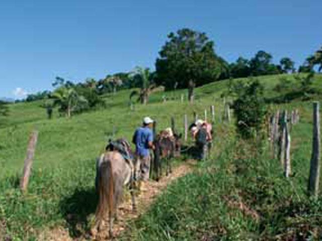 Ecoturismo: una alternativa para conocer el mundo