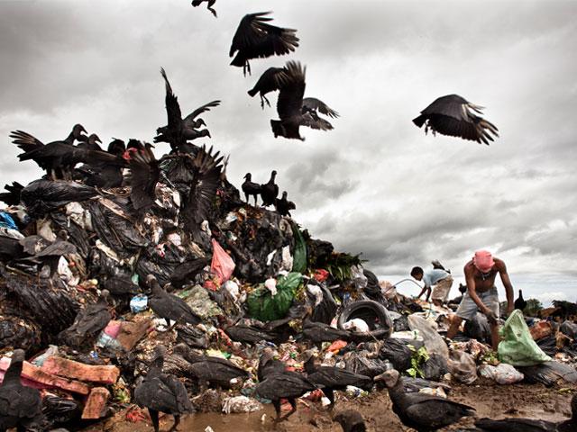 Espido Freire: Plástico y papel
