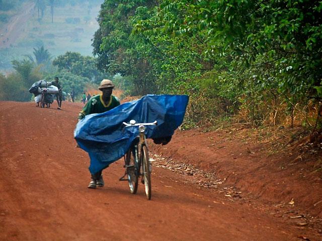 El carbón vegetal y la selva africana