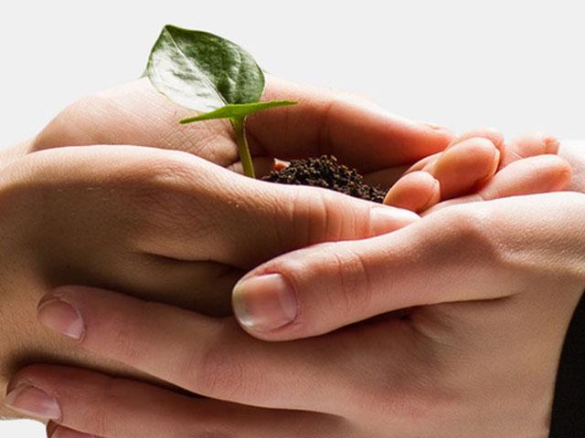 Creas lanza un nuevo fondo de capital semilla para ayudar a emprendedores sociales