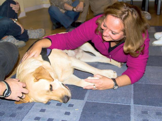 Intervención Asistida con Perros: De mejor amigo del hombre a terapeuta