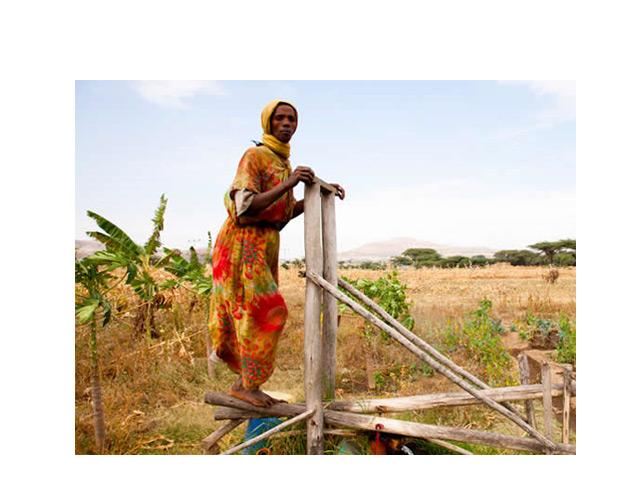 ¿Son las microfinanzas la panacea para erradicar la pobreza?