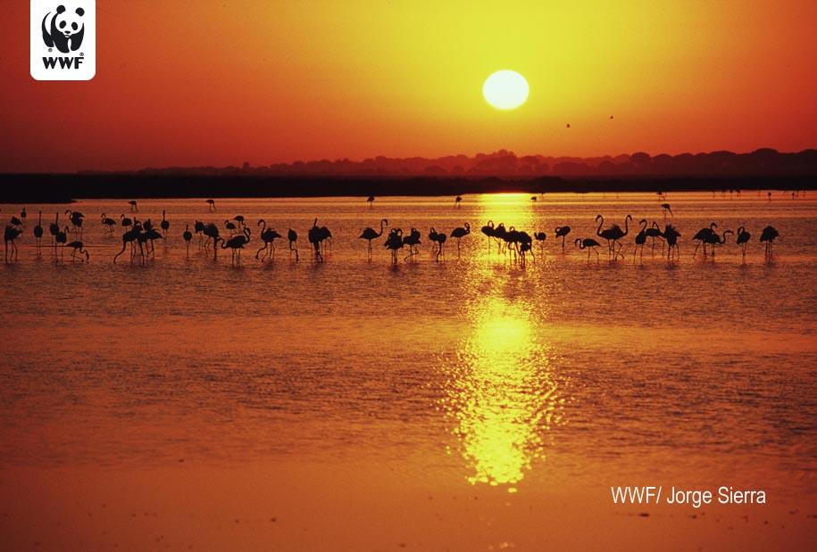 Red Natura 2000: Gran riqueza pero pobre protección