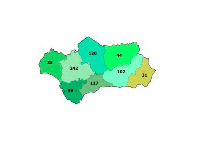 Andalucía cuenta con 790 fundaciones, que generan cerca de 23.000 empleos