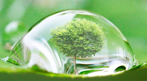 Los sectores financiero y asegurador, claves contra el cambio climático, según un informe