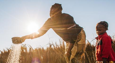 Se crea una coalición para financiar a los pequeños agricultores: Propagate