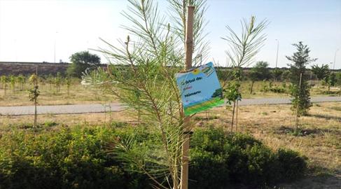 Sigaus plantará su quinto bosque urbano en colaboración con el Ayuntamiento de Leganés