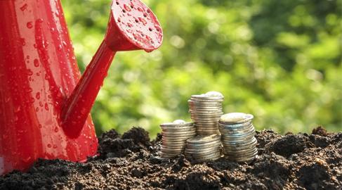 ¿Cómo se integra la sostenibilidad en los bonus directivos?