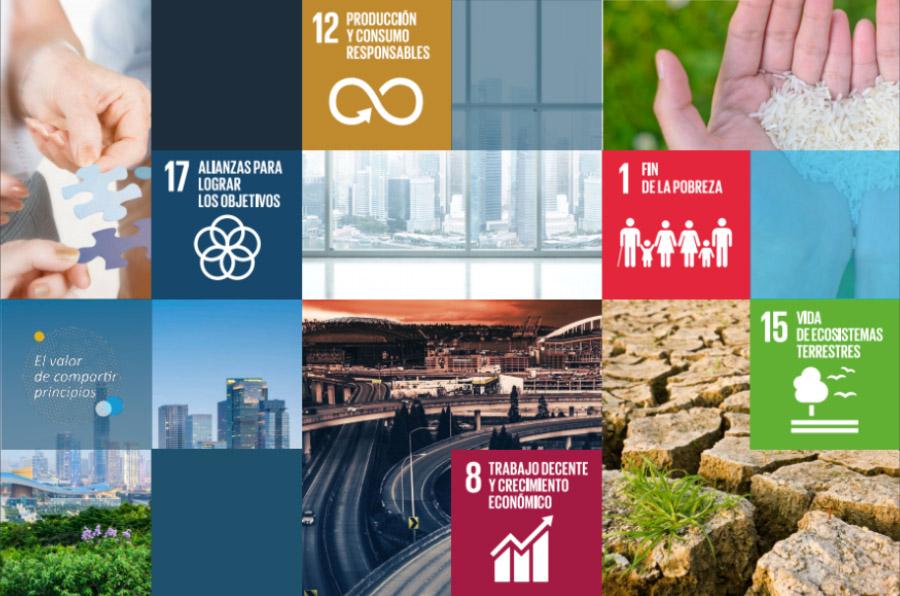 ¿Cómo implementar acciones para alcanzar los Objetivos de Desarrollo Sostenible?