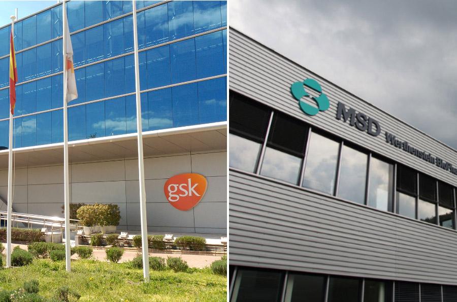 GSK y MSD, las empresas farmacéuticas más transparentes