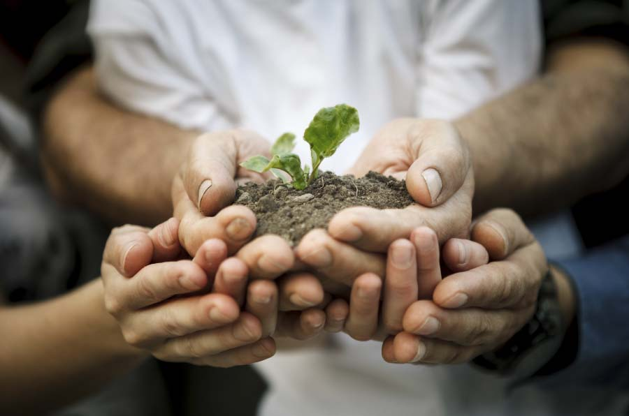 Cuando colaborar con la competencia es bueno para la sostenibilidad