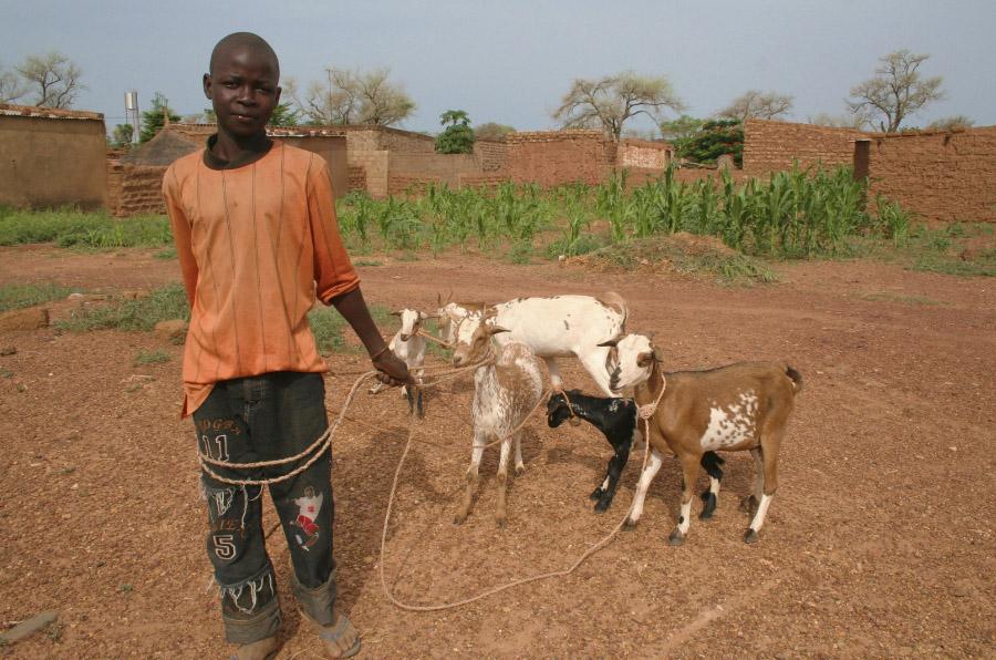 152 millones de niños son víctimas del trabajo infantil, según la OIT