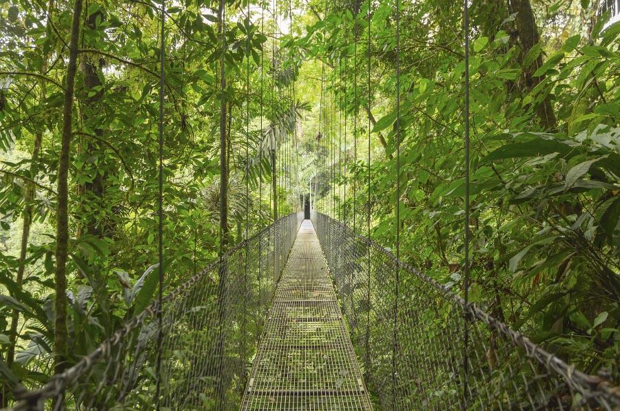 <p>Puente colgante en Costa Rica.</p>