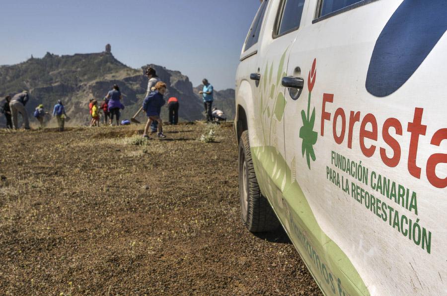 <p>Fundación Foresta ha presentado un proyecto de captadores de niebla.</p>