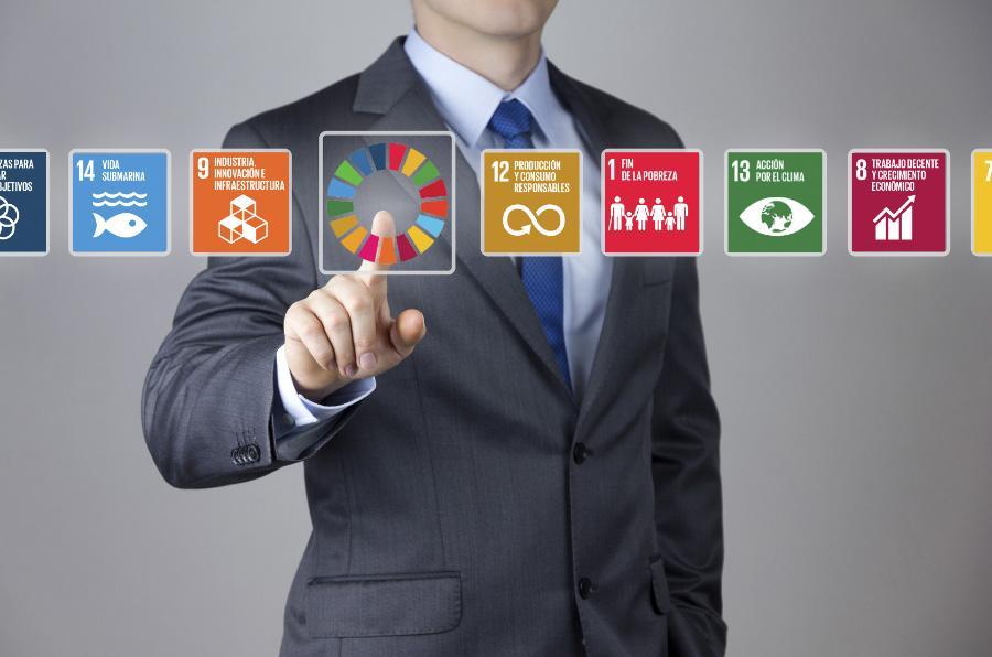 El papel de los CEO en la consecución de los ODS