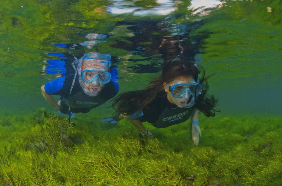 <p>Snorkeling Experience fomento de rutas de ecoturismo costero.</p>