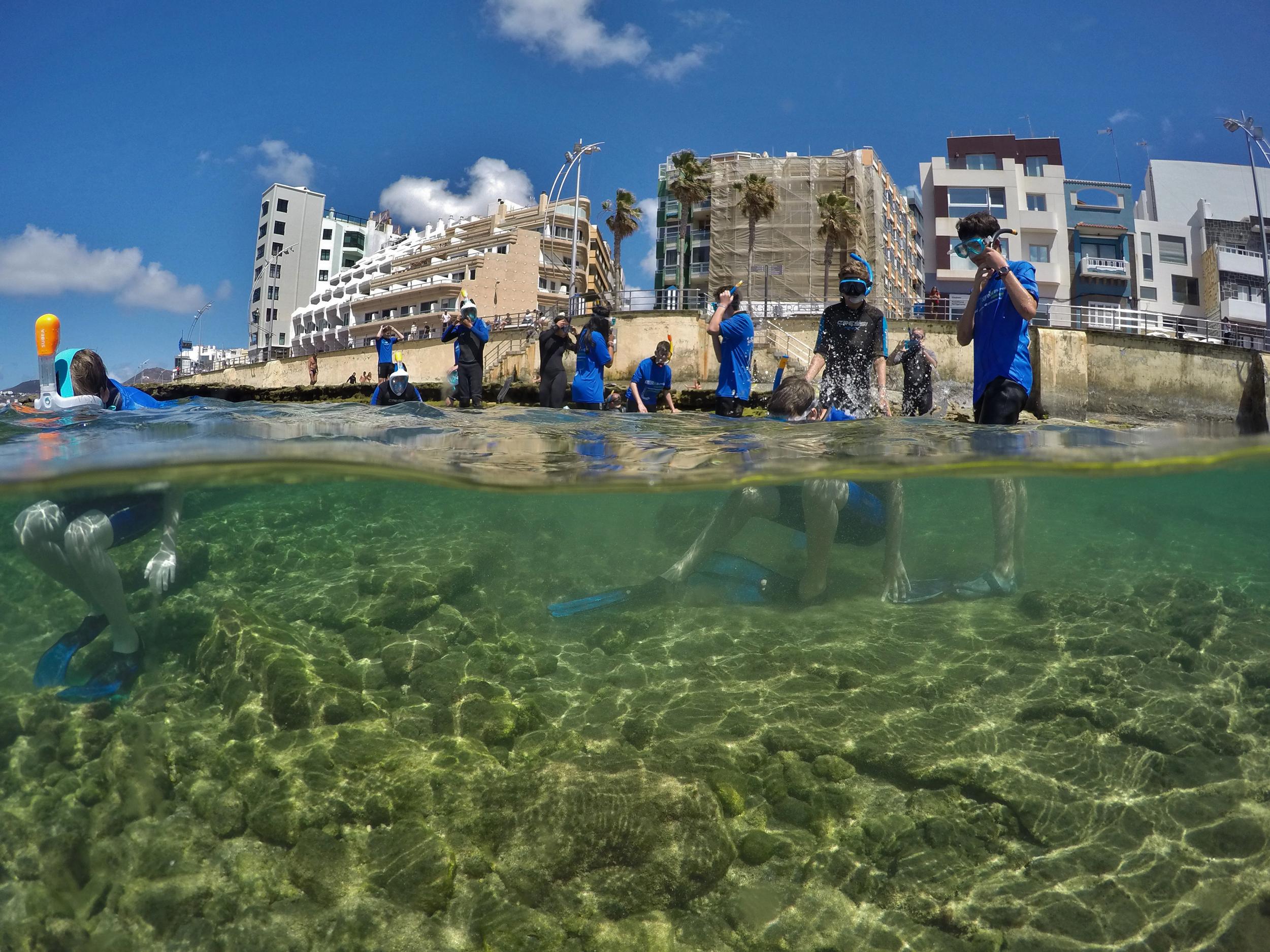 <p>Snorkeling Experience quiere acercar a los turistas a la naturaleza canaria. </p>