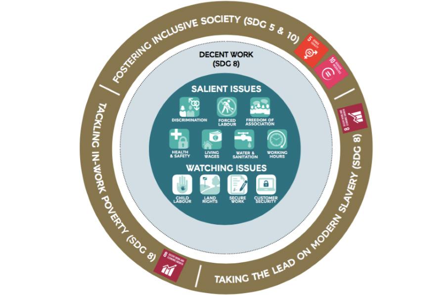 <p>ODS prioritarios y cuestiones relevantes sobre los derechos humanos para M&S.</p>