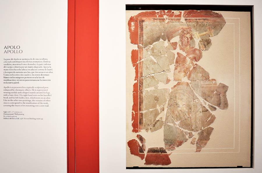 <p>Pinturas halladas en El Molinete, parte del Museo del Foro Romano.Foto: Ayto Cartagena.</p>