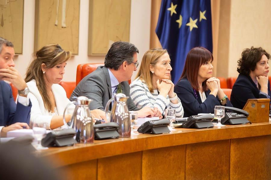 <p>Miembros de la Mesa del Congreso de los Diputados durante la Diputación Permanente.</p>