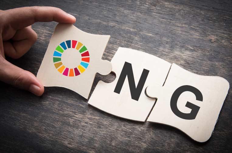 Las ONG y su papel en los Objetivos de Desarrollo Sostenible