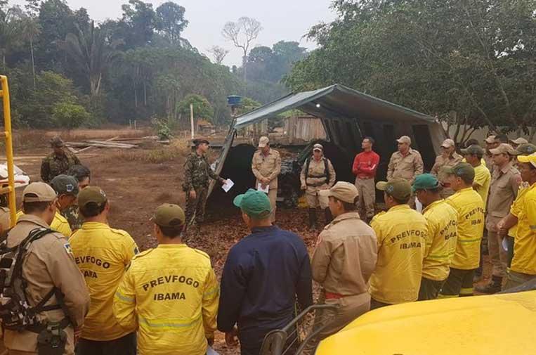 Incendios de la Amazonia ¿un culebrón de verano?