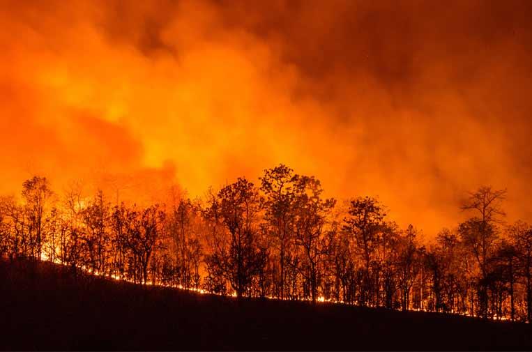 Los riesgos climáticos, a la cabeza de las preocupaciones del planeta en 2020