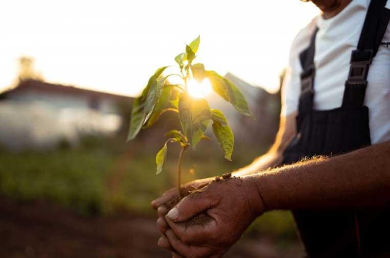 Repsol Impacto Social: inversión social para hacer frente al cambio climático