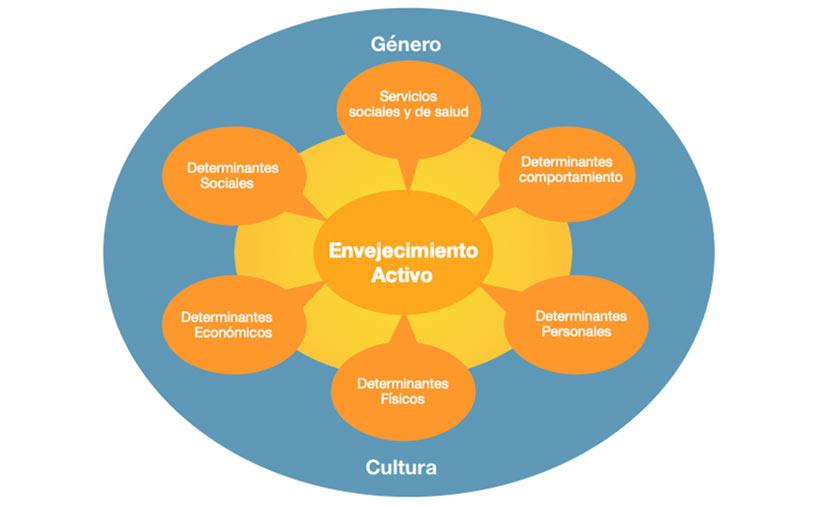 <p>Determinantes del envejecimiento activo. Fuente: traducción de Active ageing: A policy framework. World Health Organization.</p>