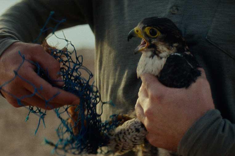 Estrella Damm sustituye las anillas de plástico de latas por cartón biodegradable