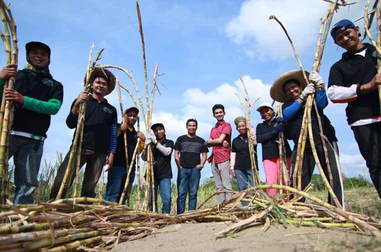 <p>Campos cultivo caña y comunidad Kanya.</p>