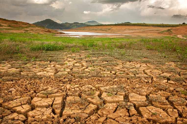 La pandemia no ha frenado el cambio climático