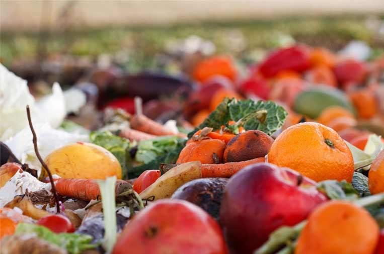 Desperdicio alimentario: un problema en la mesa de todos