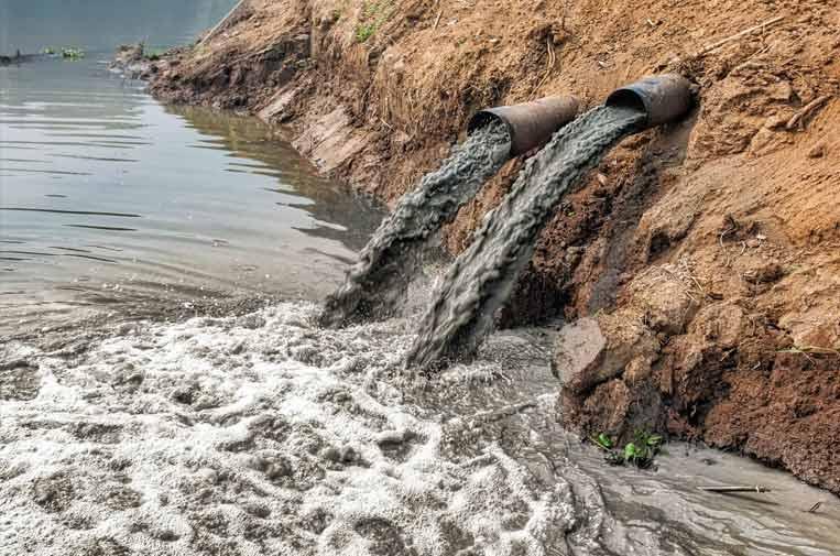 Ecocidio, el delito contra el medio ambiente que va camino de ser reconocido por ley