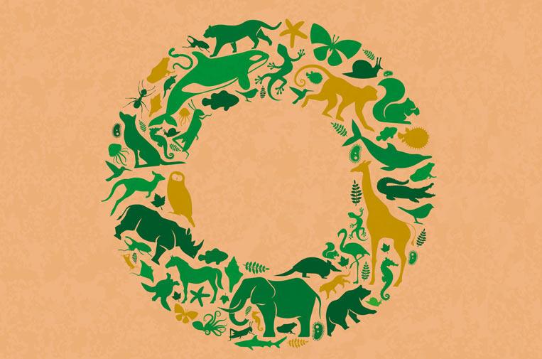 ¿Cómo abordar la pérdida de biodiversidad mediante la economía circular?