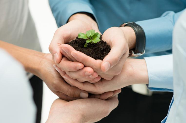 El sector asegurador ante la recuperación verde