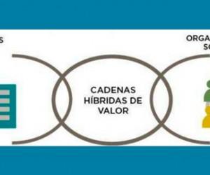 cadenas-hibridas-valor