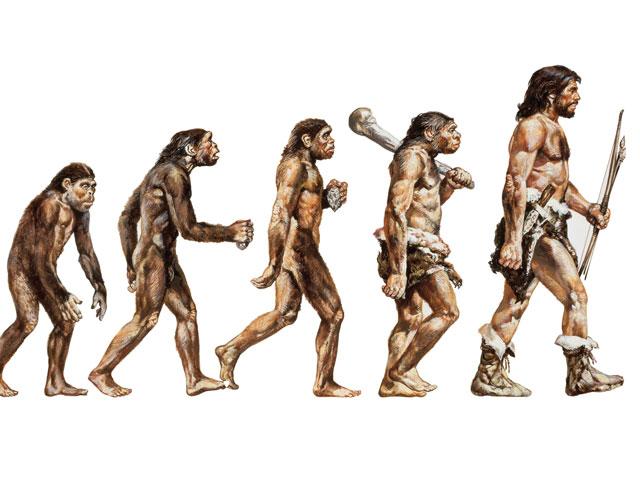 Teoria Sintetica Evolucion de la Jirafa Teoría Sintética de la